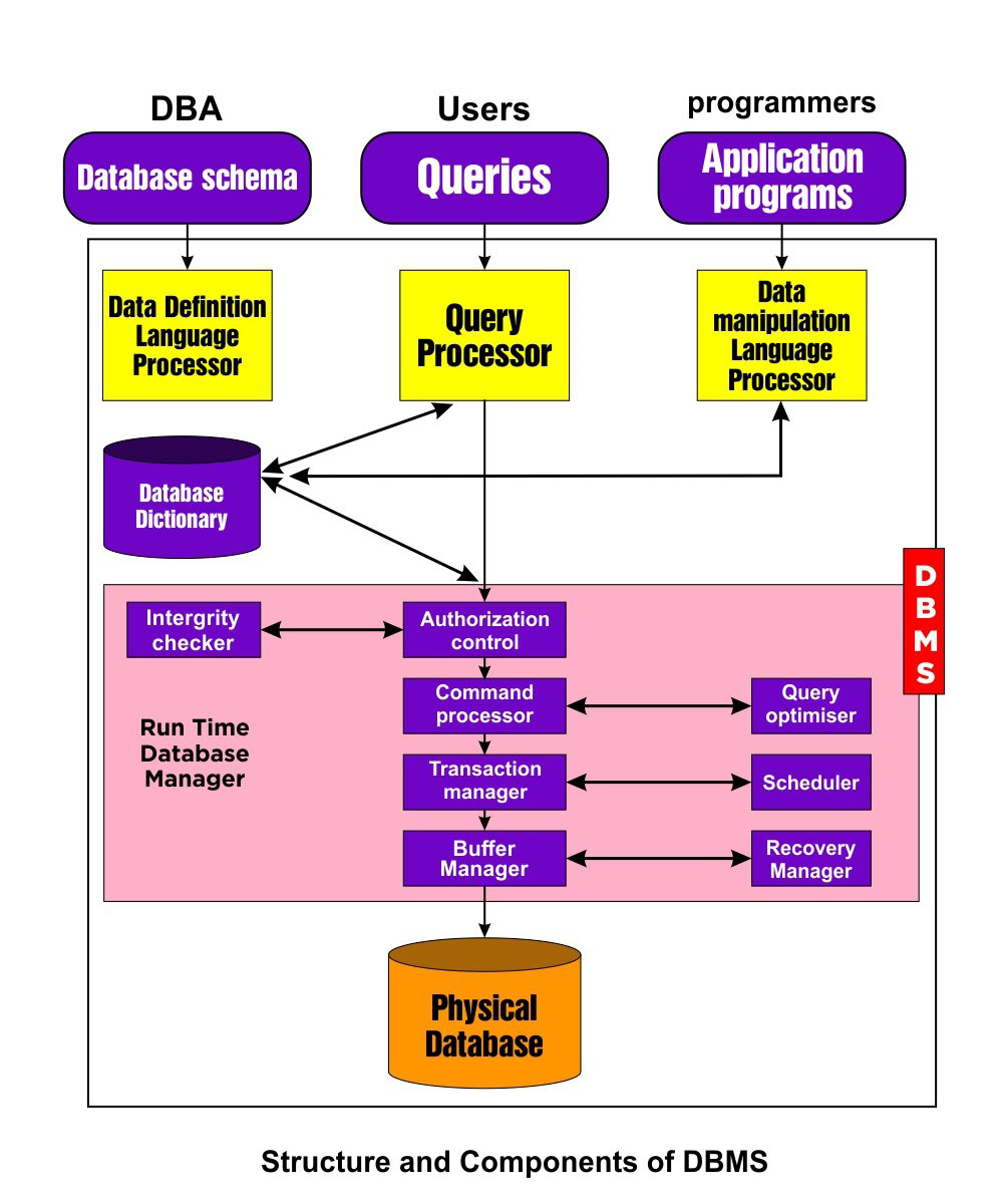 Components of DBMS